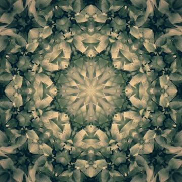 beautiful green mandala-2