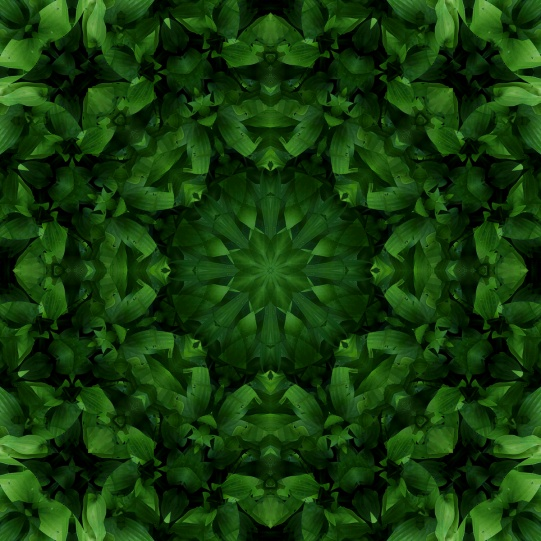 beautiful green mandala