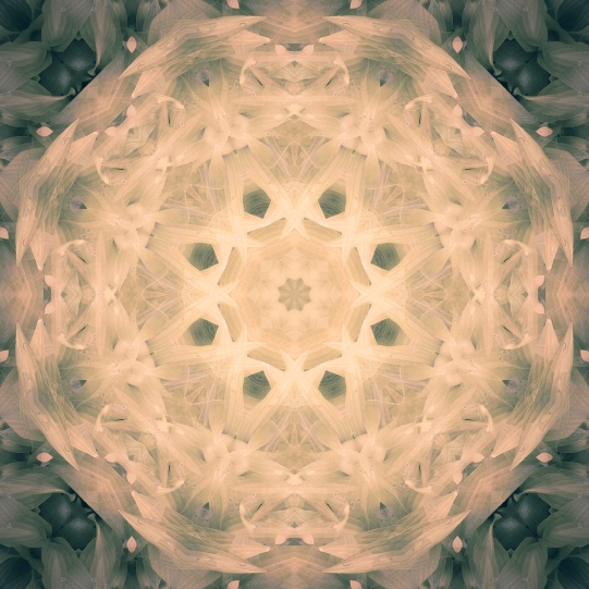 beautiful light green mandala-2