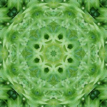 beautiful light green mandala