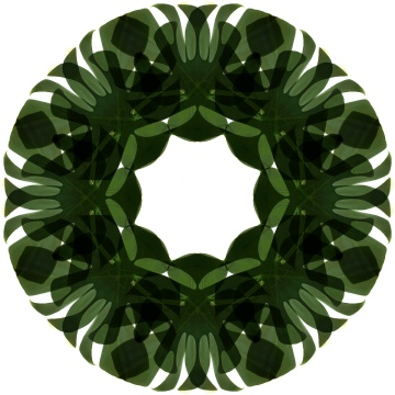 dark green circle mandala