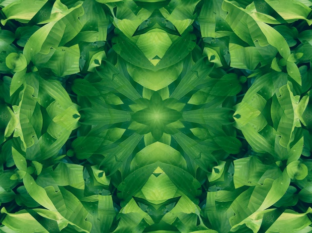 green leaf mandala