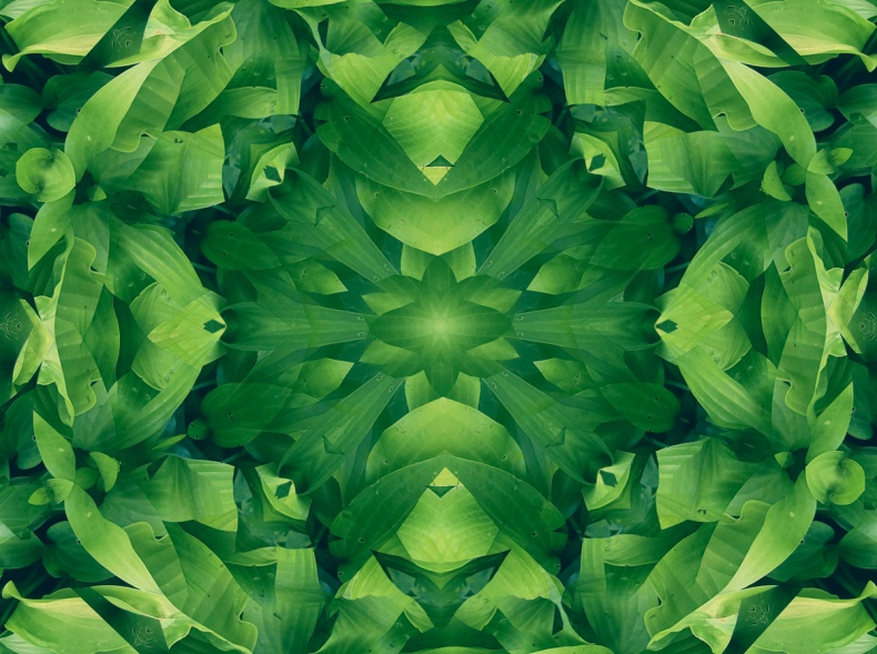 green leaf mandala